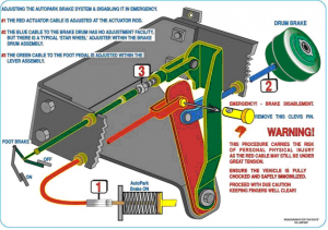 The green cable going from the brake drum to the lever relay of the lever arm assembly